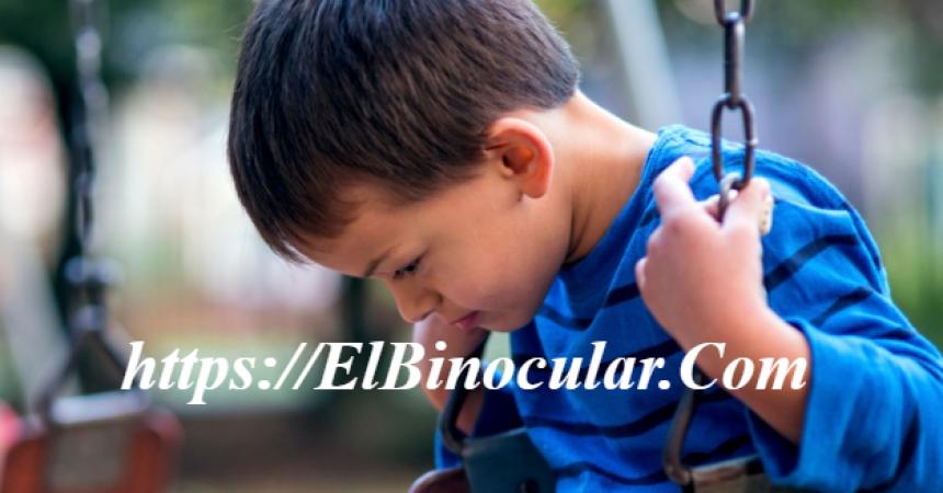 ¿Cuáles Son Las Causas Y Consecuencias Del Autismo Infantil?